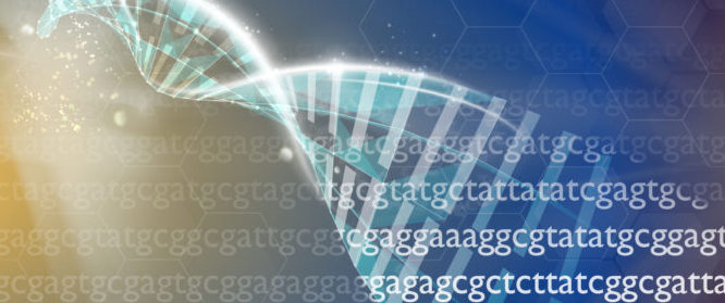 Illustration av DNA-spiralen