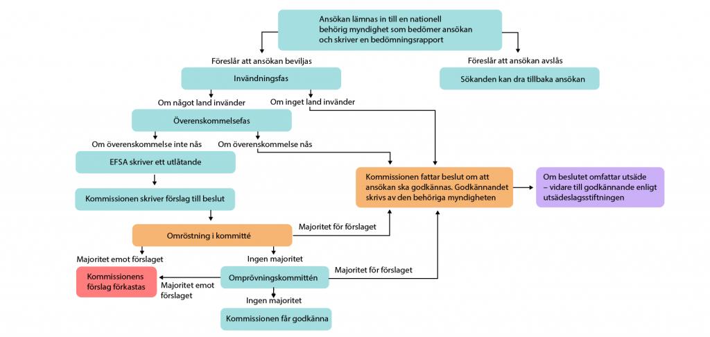 Illustration av beslutsprocessen för ansökningar under direktiv 2001/18/EG. Illustration och copyright: Gunilla Elam.
